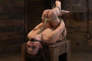 Hogtied